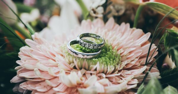 Lista zdjęć do zrobienia w trakcie ślubu i wesela