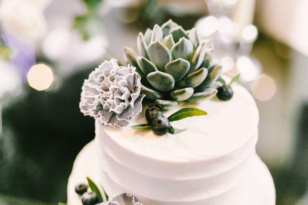 Tort weselny z sukulentem