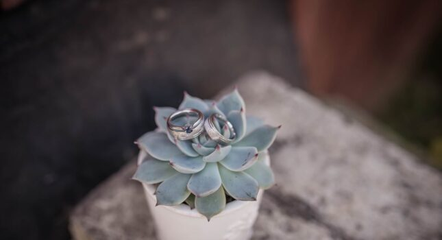 O co poprosić gości zamiast kwiatów na ślub? Ciekawe i oryginalne pomysły!