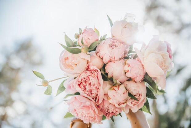 """Bukiet ślubny z piwonii – kiedy """"róża bez kolców"""" kwitnie i jakie jest jej znaczenie?"""