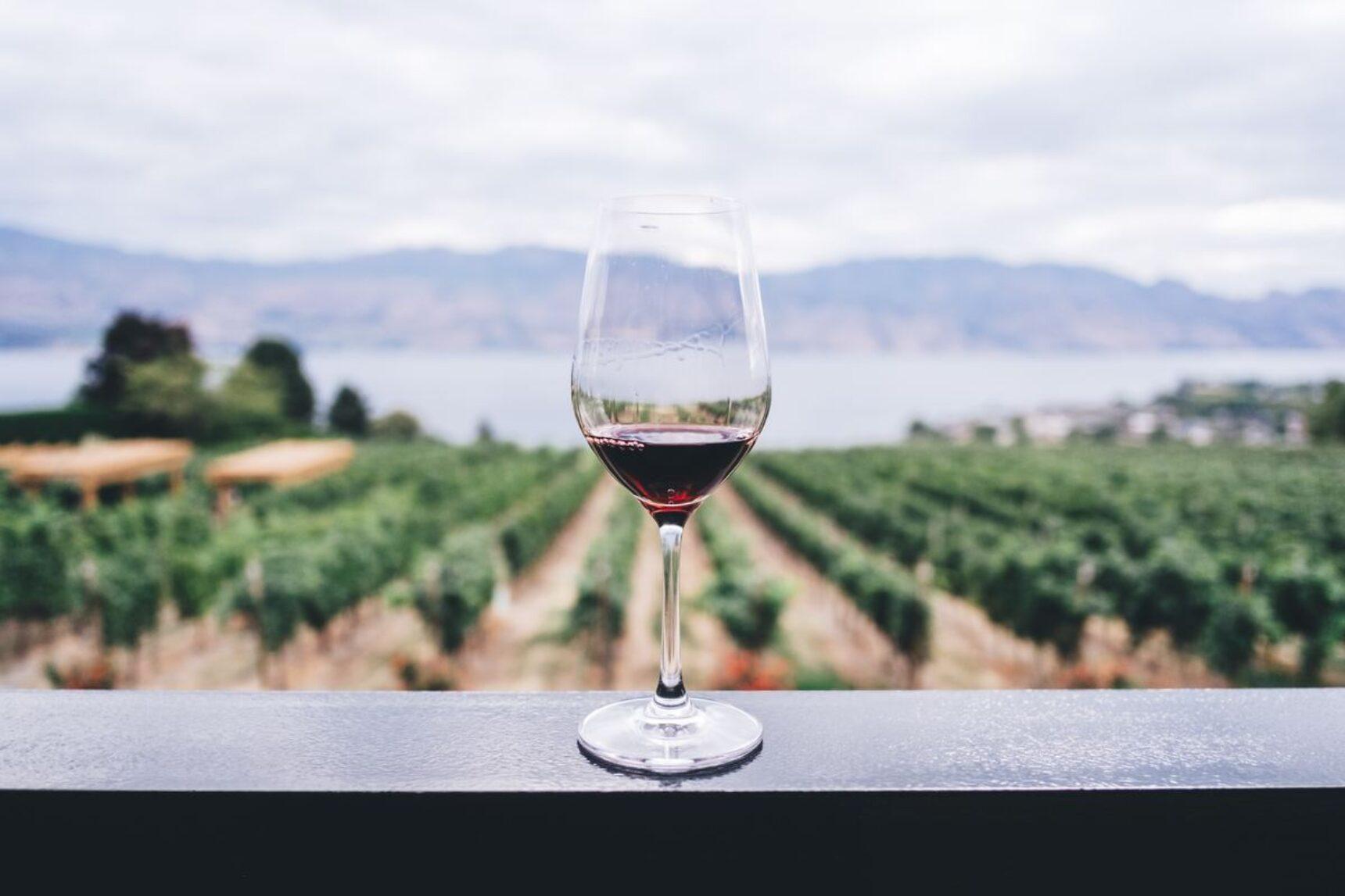 Jakie wino na wesele wybrać i ile butelek kupić? Dopasuj wino do podawanych potraw!