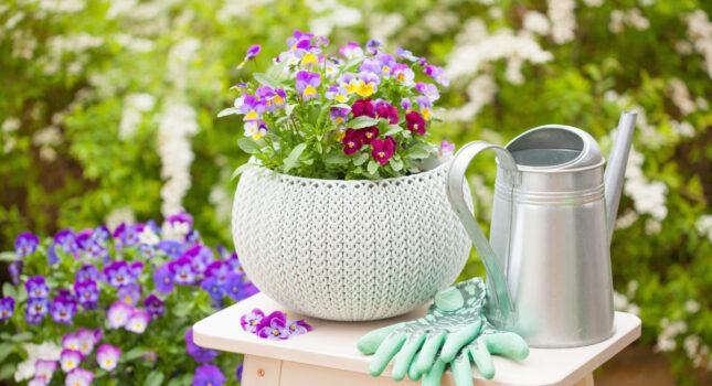 Kwiaty balkonowe - te rośliny pięknie go ozdobią!
