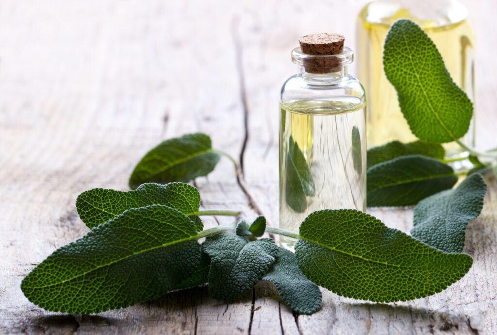 Aromaterapia – relaks dla ciała i ducha!