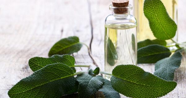 Aromaterapia - relaks dla ciała i ducha!