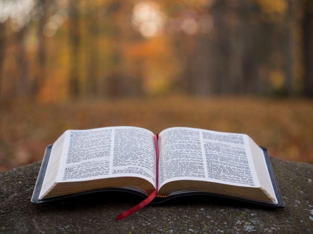 Czytania na ślub z Biblii
